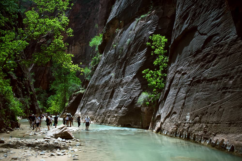 Zion's Narrow trekking trail, Zion National Park, canyons, United states of America, Outdoor life, adventure life, camping, hiking, trekking, mountains, valleys, fjords