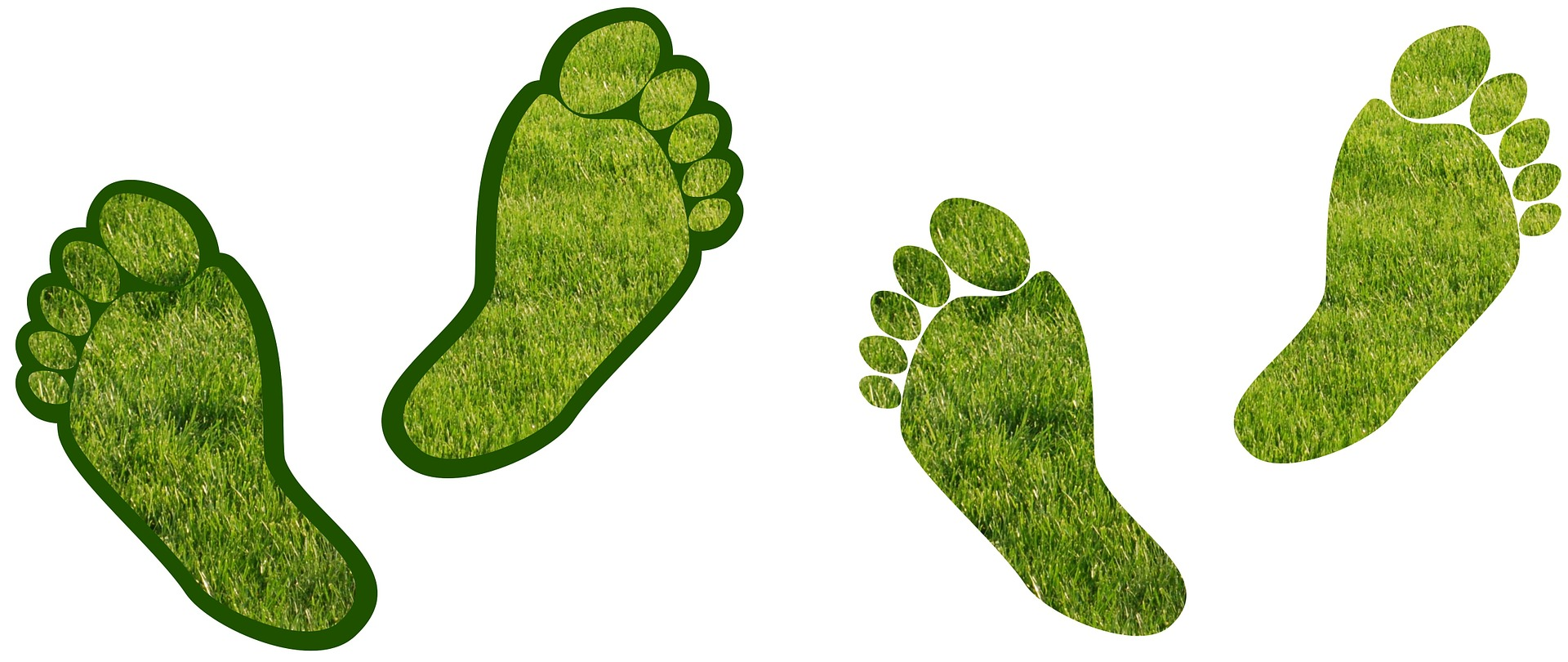 Carbon Footprint, trekking, hiking, pollution, clean, green, nature, camping, organic, trek, mountains, forests, rivers, glaciers, global warming, climate change